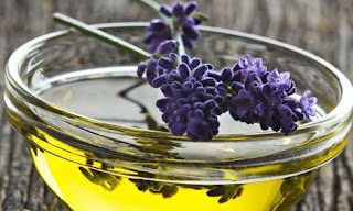 herbs for lower Blood Pressure