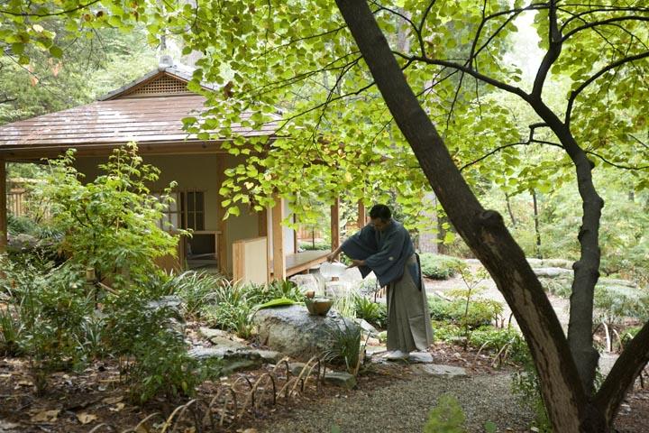 gardens@duke: November 2012