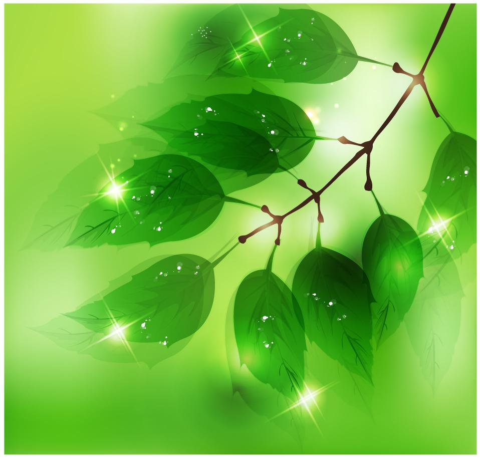 陽に輝く新緑の葉 Nature Background with Fresh Green Leaves イラスト素材