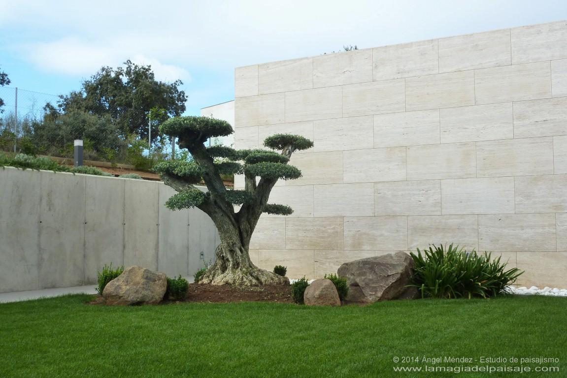 Paisajista dise o de jardines en badajoz c ceres y toda for Arquitectura de jardines