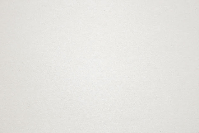 Background Paper White6