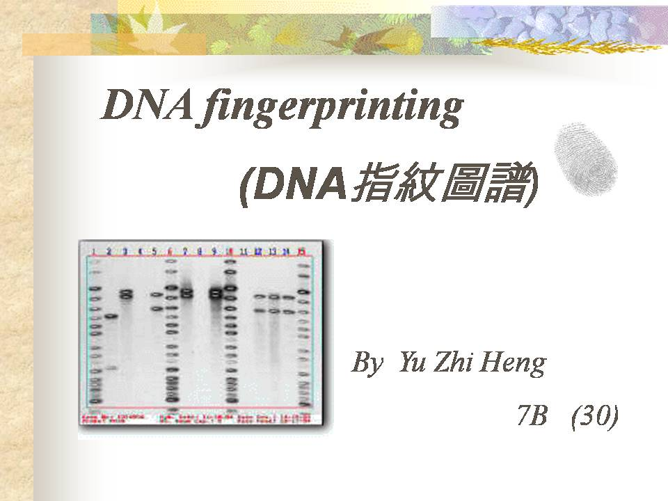 an analysis of dna fingerprinting also referred to as dna profiling and dna typing Dna fingerprinting is a method used to identify an individual from a  modern- day dna profiling is also called str analysis and relies on.