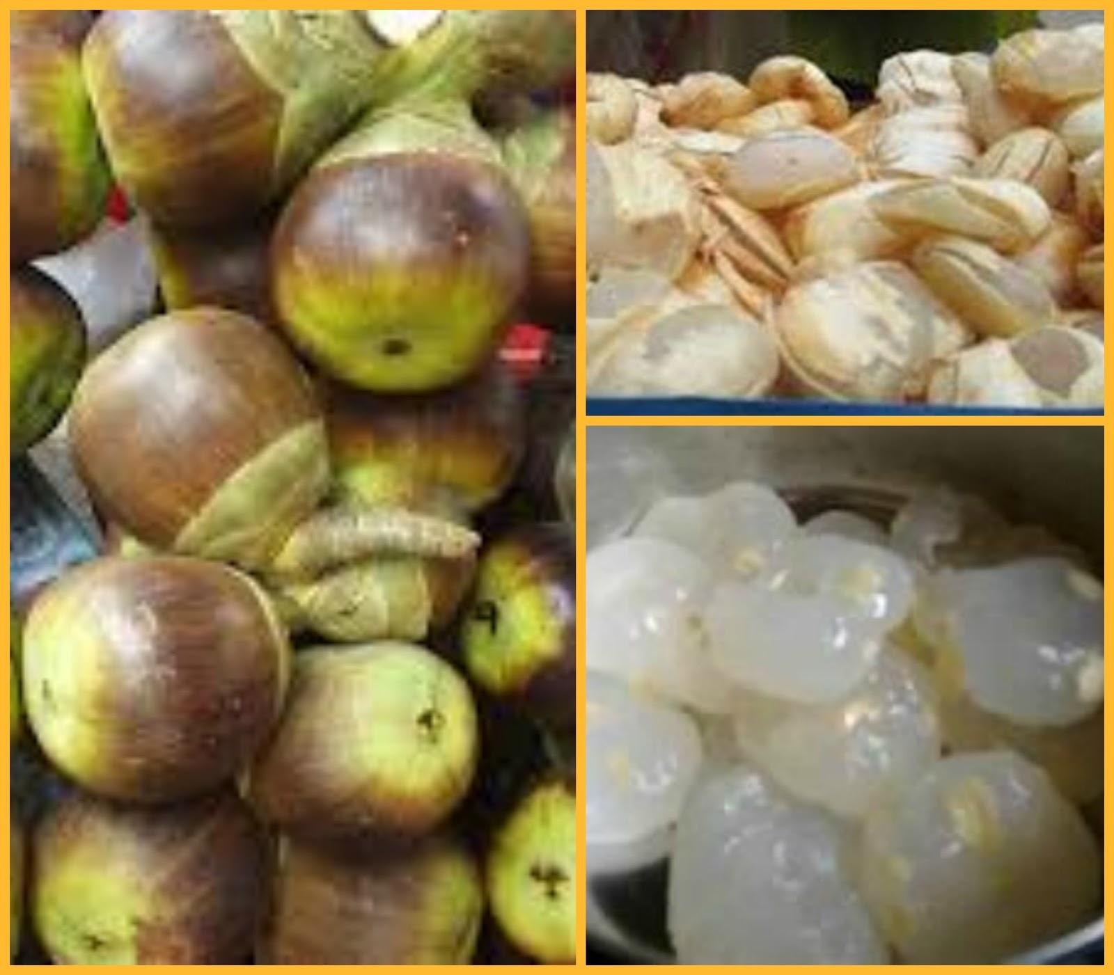 Usha S Kitchen Palm Kernal Nungu Ice Apple Tadgola