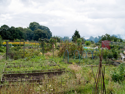 Bradley Fold Allotments