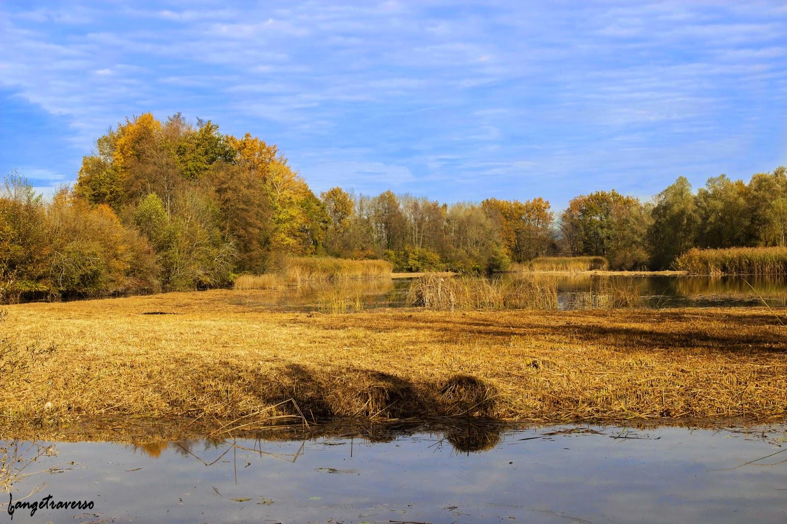 Couleurs automnales depuis l'étang de Crosagny, Savoie, France