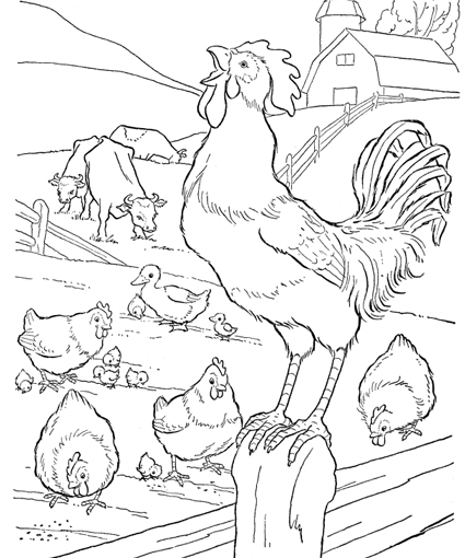 Farm Animal Coloring Pages High Resolution