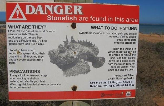 enhanced 32740 1395841595 1 Fotos que provam que a Austrália é um lugar louco