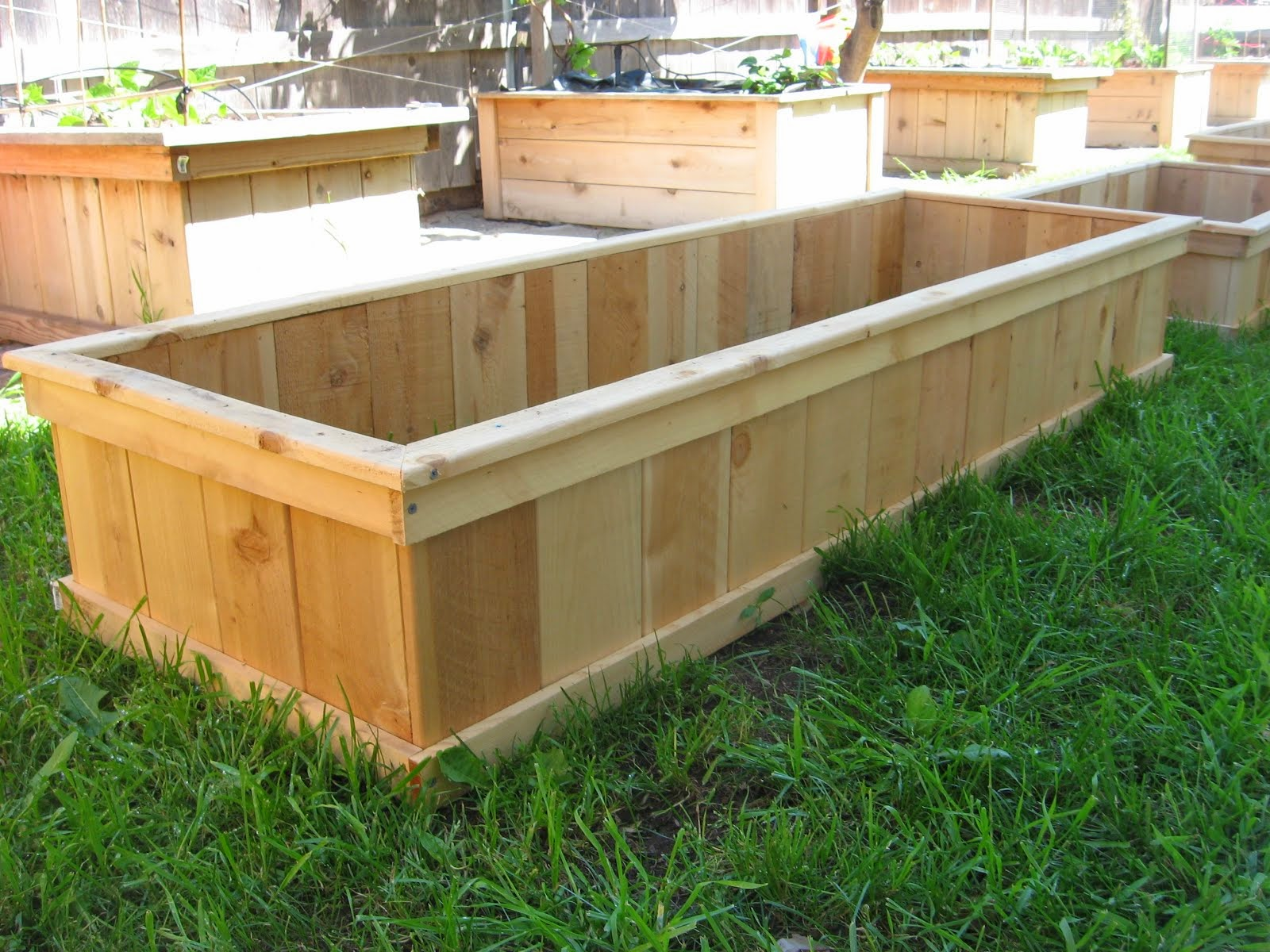 shippable raised gardens
