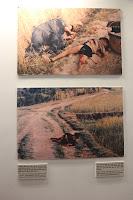 Vietnam War Crimes