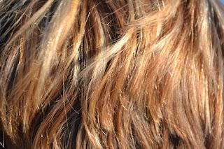 capelli piastra