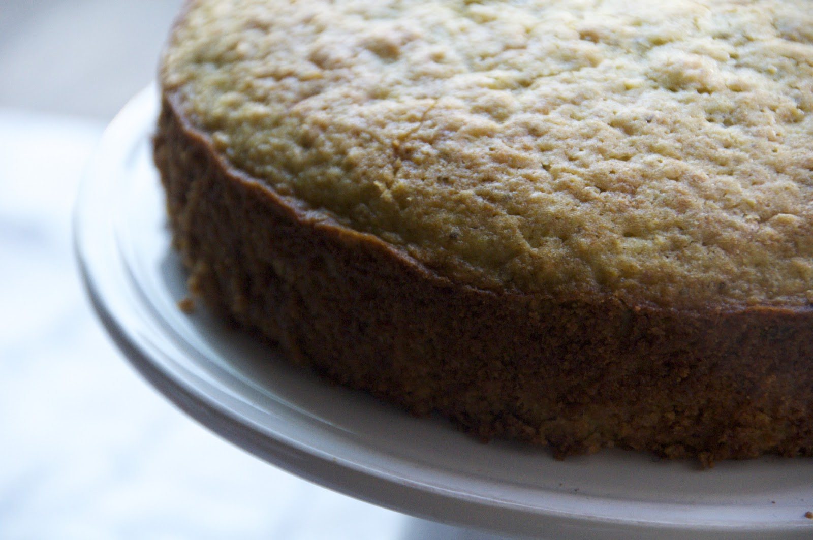 see you in the morning: pistachio olive oil cake. cream. bloody citrus