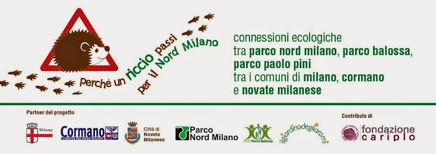 Perchè un riccio passi per il Nord Milano