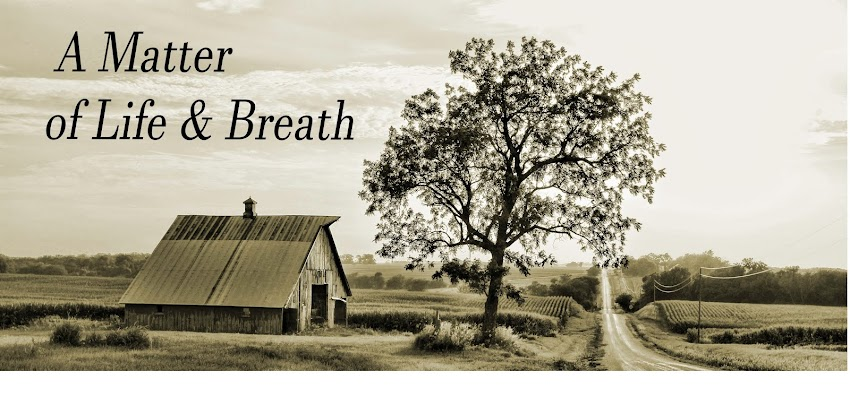 A Matter of Life & Breath