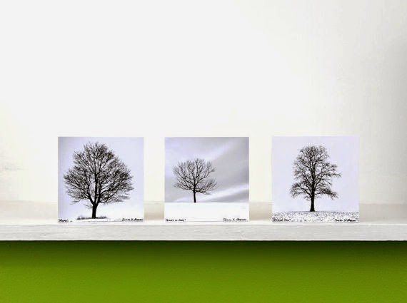 https://www.etsy.com/listing/207419717/black-and-white-lone-trees-winter-white?ref=shop_home_active_1