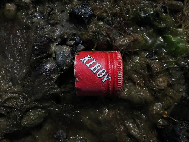 Red bottle top on soggy brown seaweed.