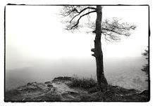 Rachel's online photography portfolio