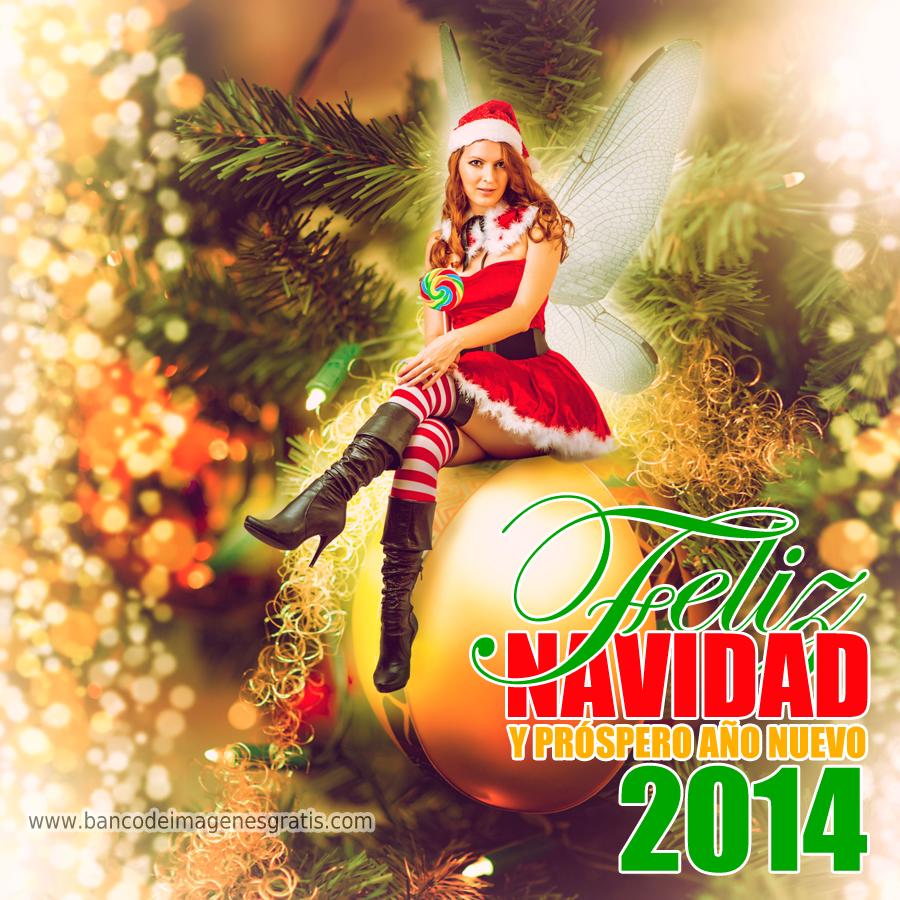Hada-de-la-Navidad-mensaje-feliz-navidad-y-próspero-año-nuevo-2014 ...