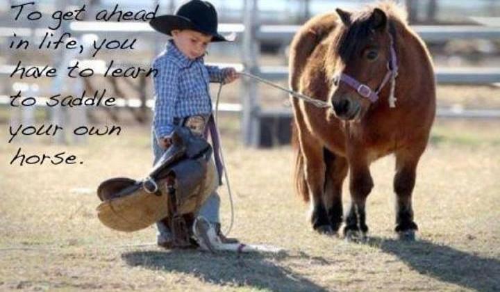 Lene bryster citater om heste