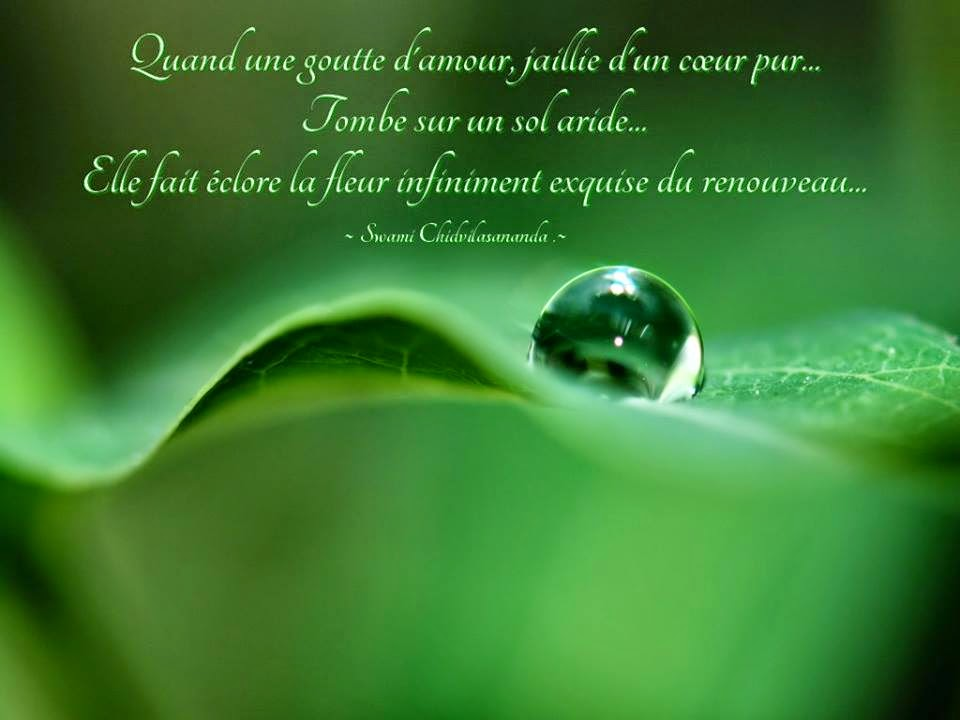 citation  - Page 14 A%2Bsagesse%2Brenouveau