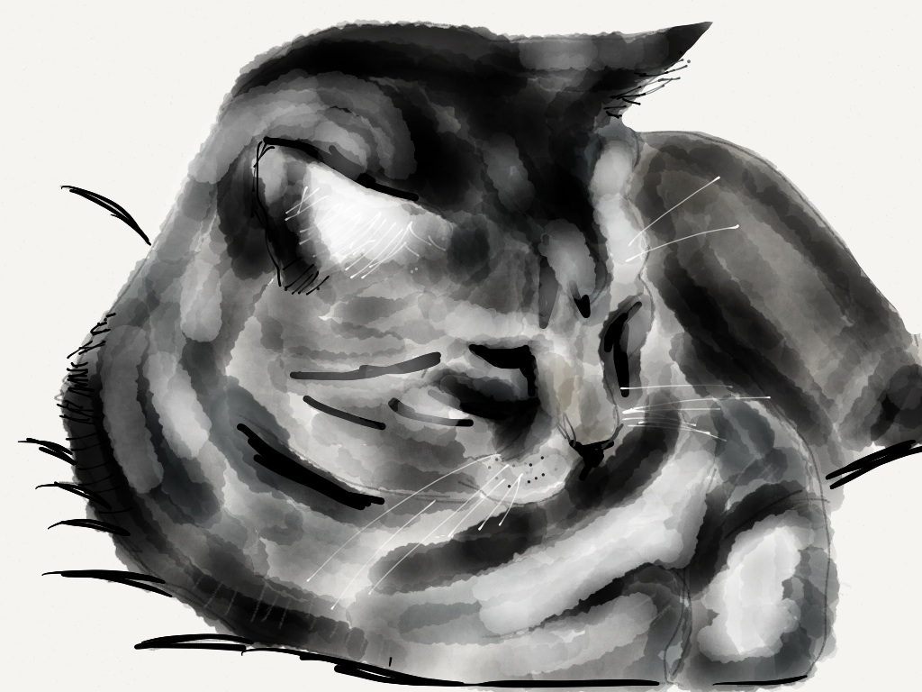 Ipad Brushes Brushes For The Ipad And