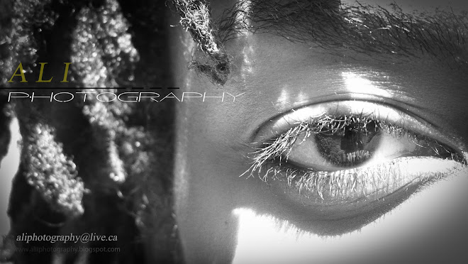 Ali Photography