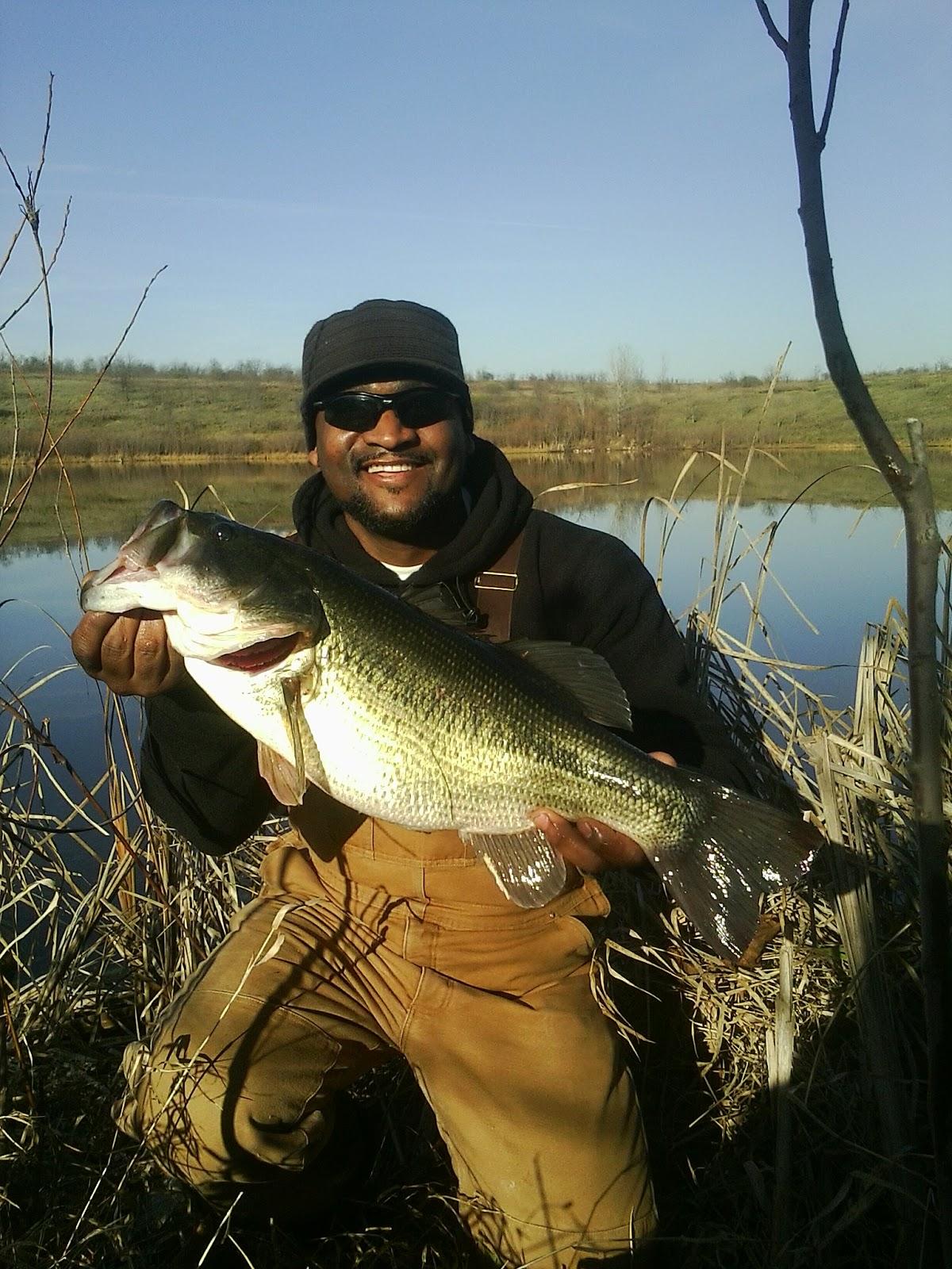 Venom lures braggin board fall bass 2012 for Fall bass fishing lures