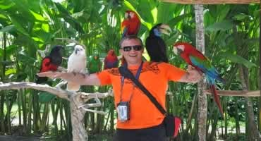 Bali Bird Park and Ubud Tour