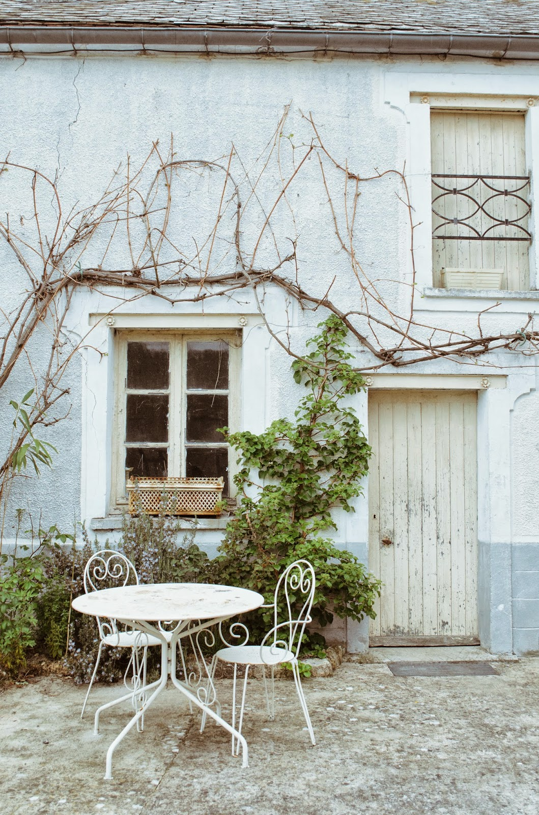 aesthetic fauna // table for two, northern france