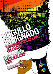 Manifestacin Madrid Orgullo indignado: TransMariBolleras en lucha