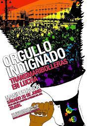 Manifestación Madrid Orgullo indignado: TransMariBolleras en lucha
