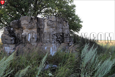 Второй бункер у деревни Ольховцы