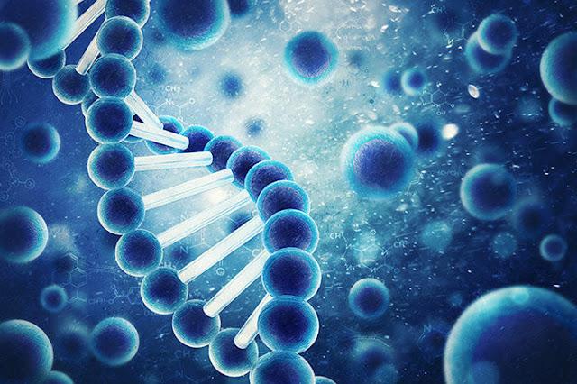 Cara Menciptakan efek DNA Dengan Photoshop