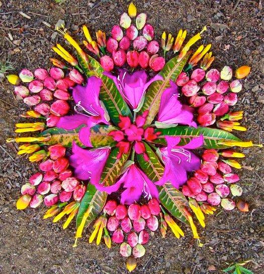 mandalas creadas con hojas y flores naturales