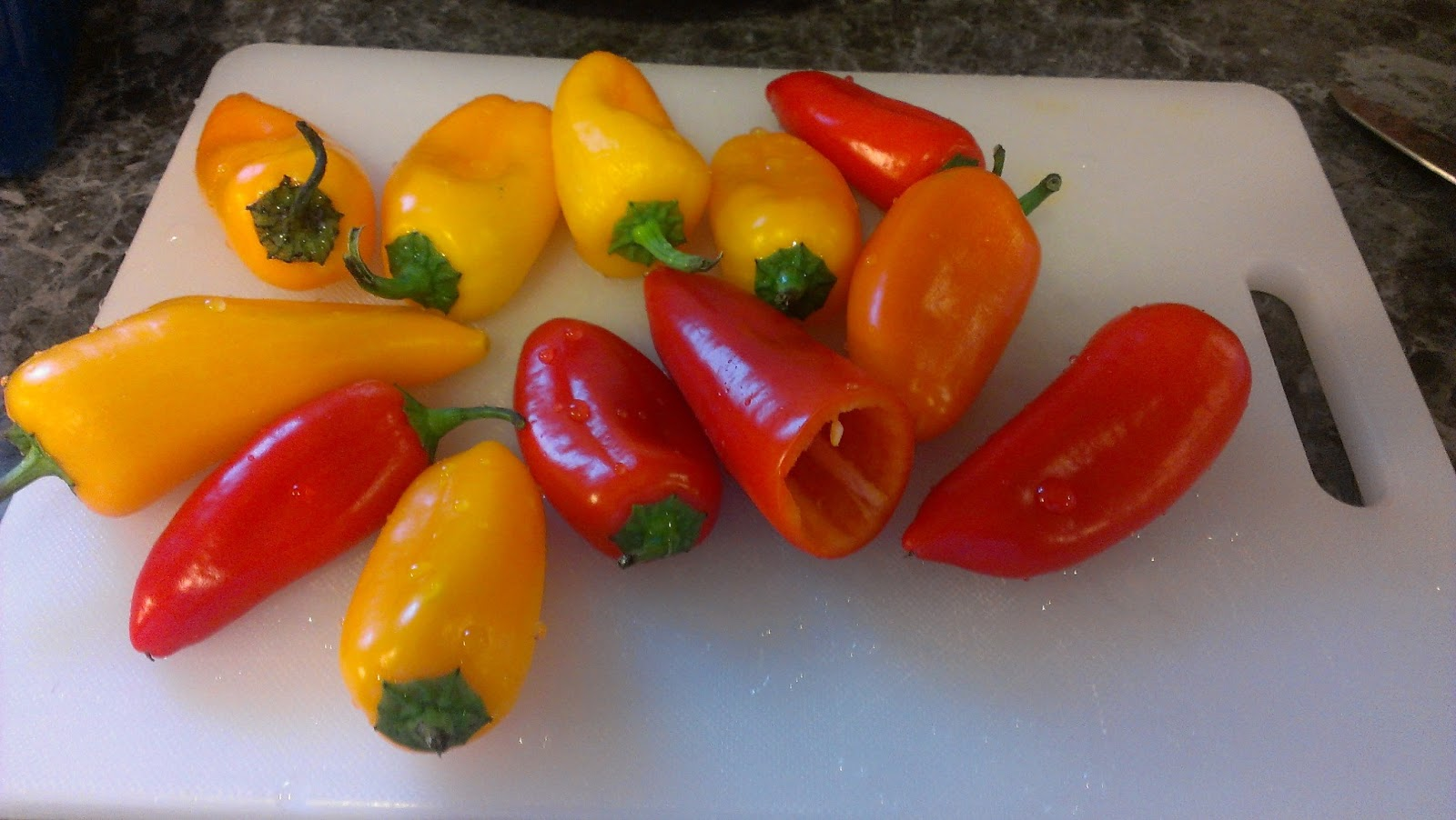 how to cook sweet mini peppers on the stove