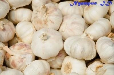 7 Manfaat Dahsyat Bawang Putih Bagi Kesehatan Tubuh