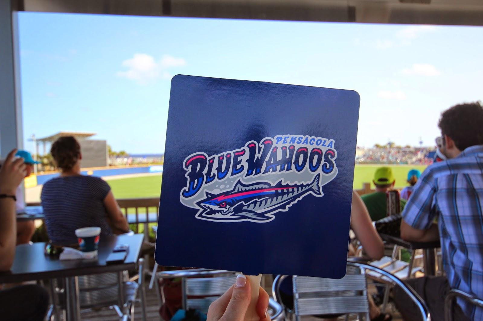 Downtown Pensacola FL Blue Wahoos