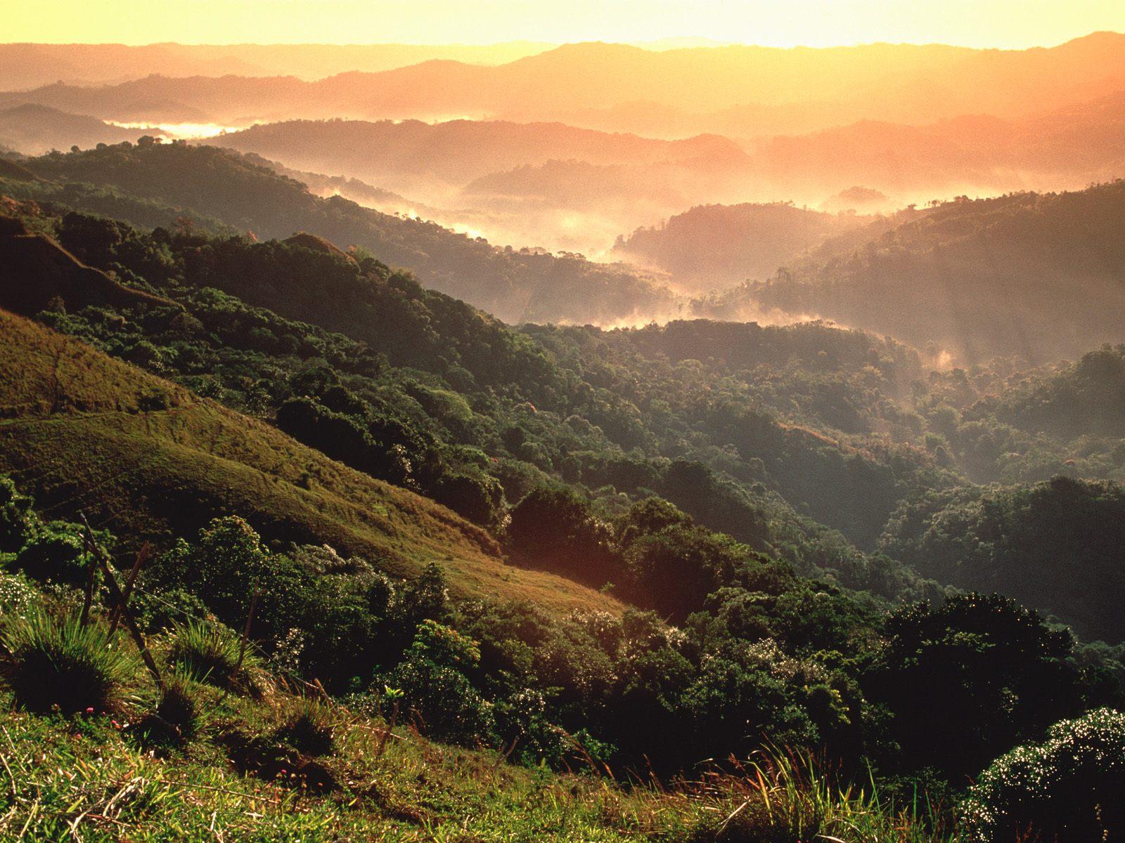 El_Yunque_Rainforest_Puerto_Rico.jpg