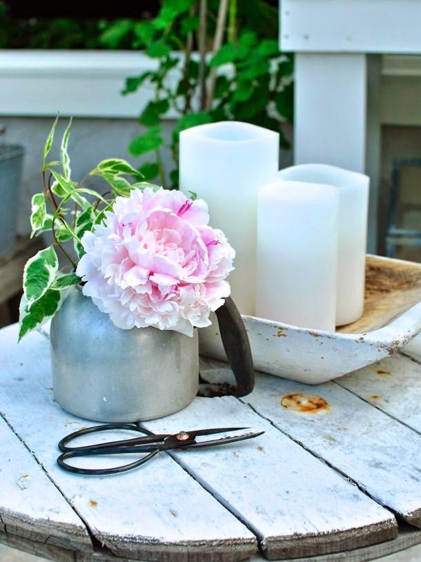 växthus hannas kabeltrumma rosa pion trädgårdssax
