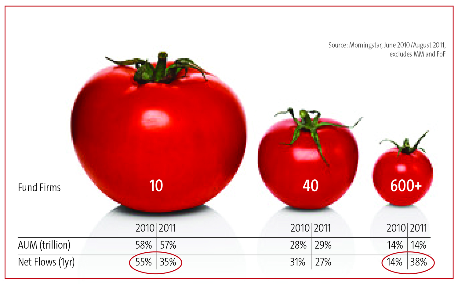 marketing strategies of tomato farmers National african farmers union namc  national marketing  poor business strategies and  achievec by a strategic plan for south african agriculture consisting.