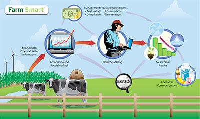 Granjas Inteligentes - Smart Farm