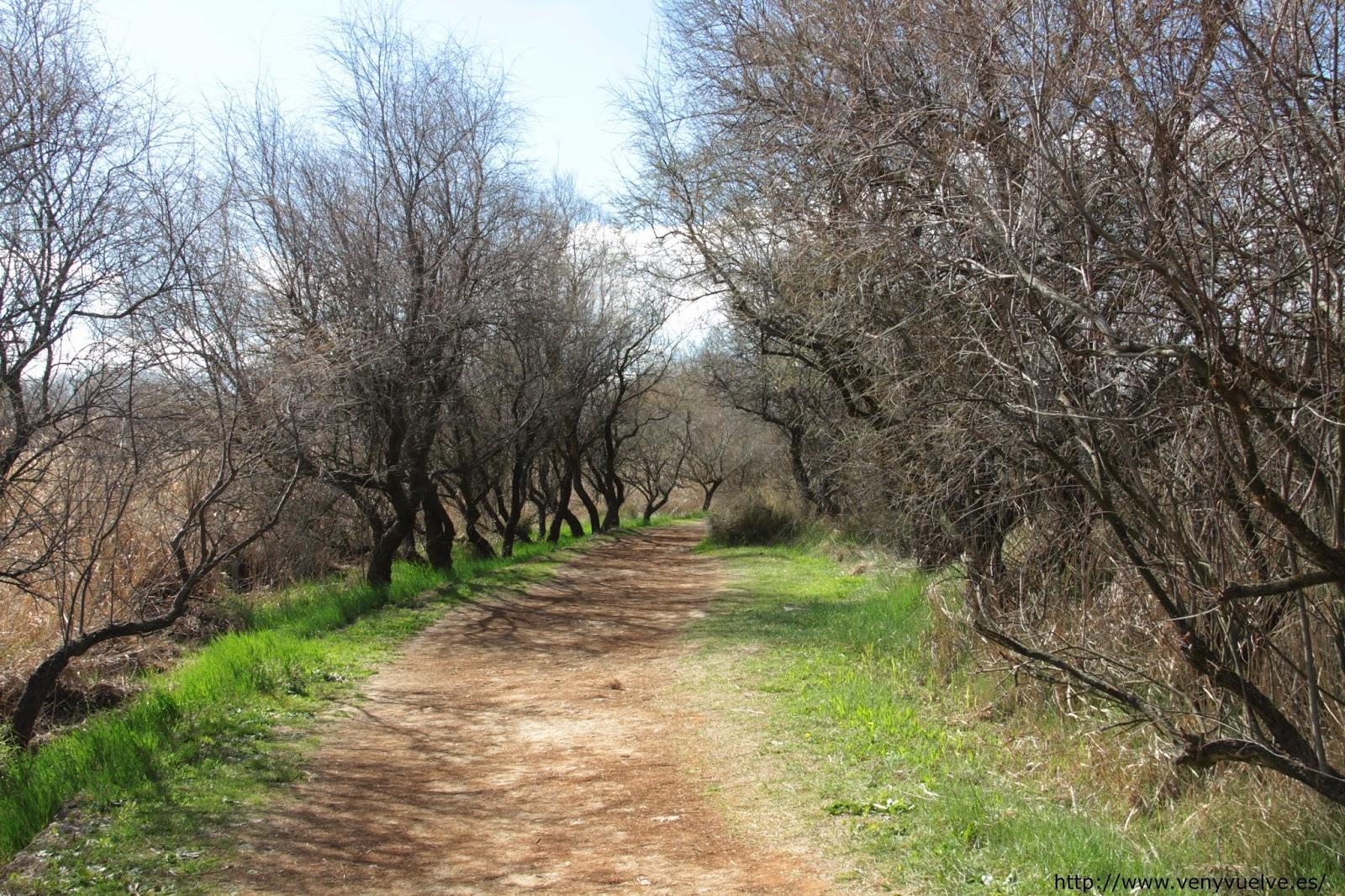 Rutas por el Parque Nacional de las Tablas de Daimiel