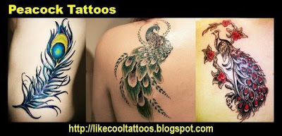 Symbolic Meaning of Peacock Tattoos