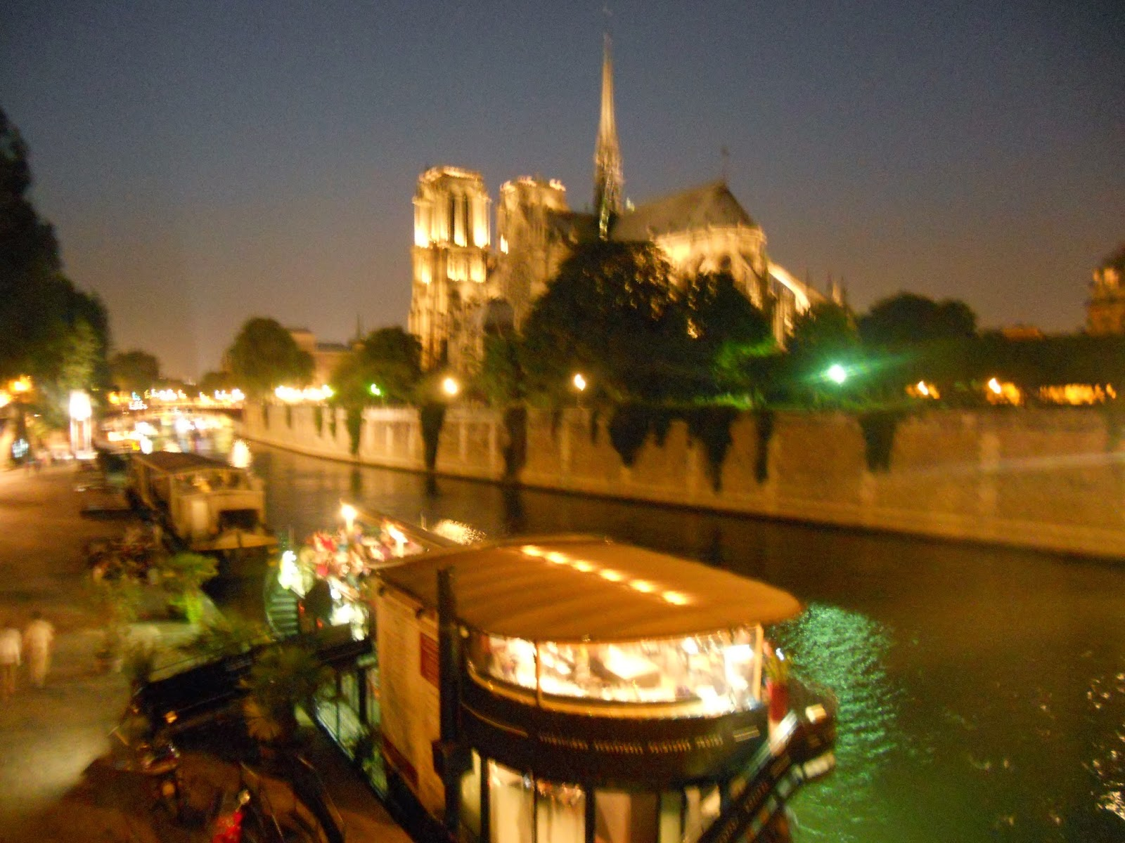 The Beauty Breakdown Notre Dame Night Seine River