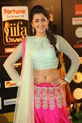 Nikki Galarani sizzing at iifa utsavam-thumbnail-17