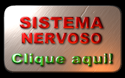 SISTEMA NERVOSO