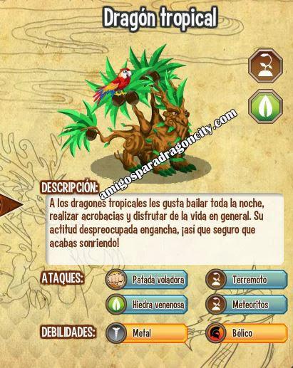 imagen de las caracteristicas del dragon tropical