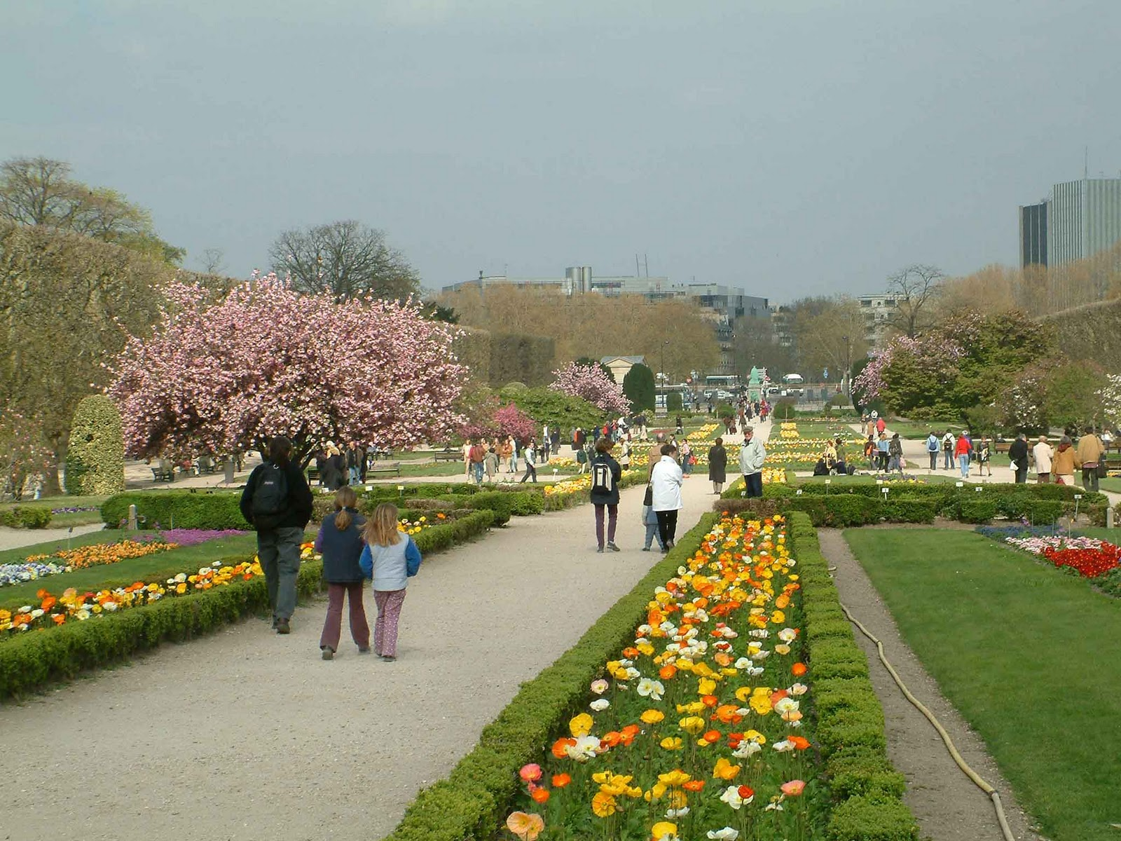 So if you are interested then please come to this park for Jardin plantes paris