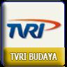 TVRI Ch 3