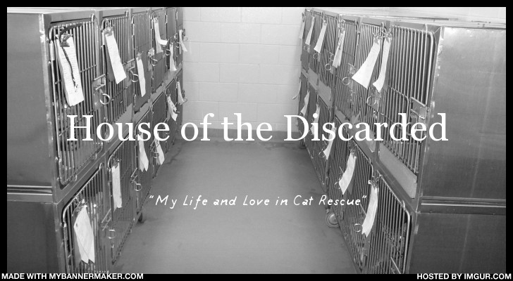House of the Discarded
