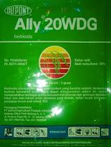 Ally WDG